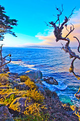 IMG_3496 (CornellBurgessphotography) Tags: seascapes bigsur pointlobos carmelbay california pacificocean montereybay cornellburgess