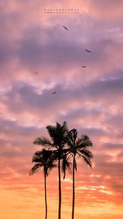 Sunrise @Ipanema Beach, Rio de Janeiro, Brazil