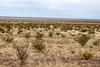 Border Fence ~HFF~ (Stuart Borrett) Tags: border christmas2017 desert fence wall hff chihuahuandesert newmexico mexico grassland creasote larreatridentata plant vegetation nature borderland basinandrange