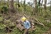 Climate change and disasters   Cambio climático y desastres - Puerto Rico (Pan American Health Organization PAHO) Tags: hurricanmaria latinamerica paho pr posthurricane puertorico environmental portraits huracan desastre