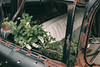 Passengers (rantropolis) Tags: abandoned cars seats chairs urbex urbanexploration mcleans autowrecker