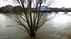 P1380928  PARIS  LA SEINE EN CRUE  ,PONT-DES-ARTS  ,  QUAI DU LOUVRE (closier.christophe) Tags: paris inondation seineencrue quaidulouvre pontdesarts