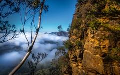 .... Up Where We Belong (jenni 101) Tags: 52weekchallange 652 australia bluemountians clouds nsw skyandclouds nikond7200 photographybyjen rockformations