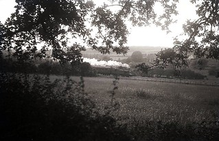 Train in Meon Valley 1946