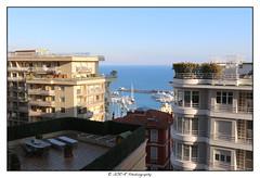 2017.12.25 Monaco 36 (garyroustan) Tags: monaco montecarlo principauté sun méditerranée mediterranean french riviera