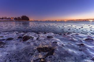 Frosty Rocks at Low Tide