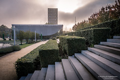 A fresh new day - Erasmus University Rotterdam/NL (About Pixels) Tags: 0919 2017 aboutpixels autumnseason eur erasmus erasmusuniversityrotterdam herfstseizoen holland mnd09 nikond7200 nl nederland netherlands nikon rotterdam zuidholland activiteit activity agenda air algemeen appliedart architecture architectuur art building collecties educatie education fog gebouw kunst lucht luchtvochtigheid meteo meteorologie meteorology mist nature natuur school september sky stedelijk sunsets toegepastekunst universiteit university urban weather weer zon zonsopkomst