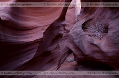 Crevices of Wind and Water (ficktionphotography) Tags: antelopecanyon canyon arizona desert geology explore roadtrip2012 nature