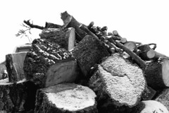 remains of a storm (Rosmarie Voegtli) Tags: wood pile storm snow blackandwhite blackwhite dornach switzerland solothurn morningwalk