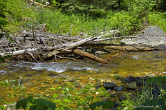 The Crooked River (jimgspokane) Tags: camping creeks rivers mountains trees forests idahostate