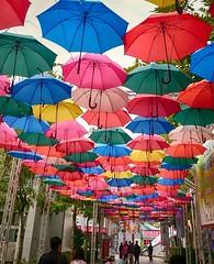 傘的集合 Collection of umbrellas (葉 正道 Ben(busy)) Tags: creative creativeˍpark taichungcity taiwan 台中 台灣 people 創意產業園區 umbrella 雨傘 color 色彩 creativeindustries 創意產業