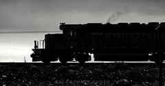 SD40-2 silhouette (rolfstumpf) Tags: eisenbahn usa unionpacific utah westernpacific emd sd402 up3514 monochrome silhouette blackwhite blackandwhite olympus e520 trains railway railroad locomotive diesel smoke