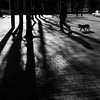 people and dogs (bemberes) Tags: bw urban bilbao em10