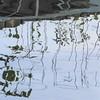 Lac du Flambeau, WI, North Woods, Lake Tippecanoe, Reflection (Mary Warren 9.6+ Million Views) Tags: lacduflambeauwi northwoods nature flora plants lake water reflection