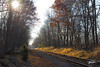 Autumn's Last Light (Troy Strane) Tags: railroad autumn fall tracks outdoors nikon d810 indiana northeastern reading michigan