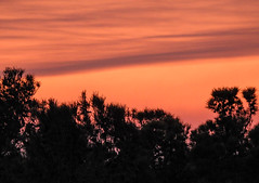 DSCN0334 (j.s. clark) Tags: florida dogisland sunset sky smoke