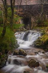 Hidden spot in a forest near Kinlochleven (ola_er) Tags: scotland waterfall longexposure water january landscape nature woodland