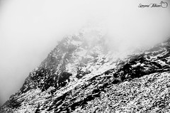 Snowstorm (EXPLORED #108 02/09/2018) (meepeachii) Tags: alps thealps alpen mountain mountains hills snow snowstorm peak weather rough summer winter clouds sky grey monochrome blackandwhite bw photography nikon work university excursion plants biology biologist biologistwork botany botanicalwork botanical mywork oddweather mist nature bavaria germany austria