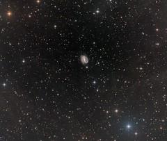 NGC7479 - a barred spiral galaxy in Pegasus (Daniele Malleo) Tags: barred spiral galaxy pegasus astrophotography astronomy stars ifn nebula