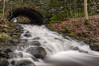 _DSC7436.jpg (wslewis73) Tags: waterfall slowshutter smoothwater d300s 1224
