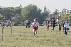 Ilaria Piottoli