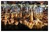 """Fuentemolinos - Formaciones en """"El lago"""" (Sorginetxe (Iñigo Gómez de Segura)) Tags: espeleología espeleofotografía espeleofotografo espeleotemas espelotema gour calcita fuentemolinos burgos cueva cave caving cavidad iñigogomezdesegura ilunpeart speleophotography speleophotomeeting fotografíasubterranea subterránea"""