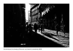 Lineamenti urbani (Pollini Photo Laboratory) Tags: marcopollini polliniphotolabcom fotografiaurbana streetphotography leica leicam8 summarit 35mm italy siena blackwhite bianconero monocrome m8