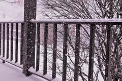 13_winterscene