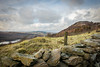 16th January 2018 (Rob Sutherland) Tags: gummershow lake windermere district ldnp worldheritage nationalpark hill hills fell fells lakes south north west england uk english britain british cumbria cumbrian dry stone wall farming agriculture upland