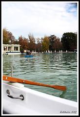 (Estibaliz Llano Vicente) Tags: madrid spain españa capital viaje trip retiro parque boat bote barca remo