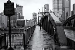 Rainy Commute (Paul McCarthy99) Tags: bridge rain umbrella bw sony minolta