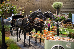 chicago flower and garden show. march 2015 (timp37) Tags: navy pier chicago illinois flower garden show march 2015 horse statue