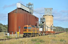 Locomotives 2207+2212 cruise past the silos at Gunningbland with a loaded railset and an empty rake of container wagons on transfer from South Australia. (Amateur-Hour Photography) Tags: nikon nikond610 d610 arg gwa railtrain 2212 2207 railroad railways railway rail train trains diesel diesels locomotive locomotives australiantrains nswrailways