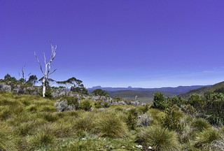 Cradle Mountain Lookout
