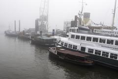 A foggy day at Elbe river (Burminordlicht) Tags: nebel nebelwetter neblig foggy fog elbe hamburg winter