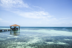 IMG_3676 (CandiceLobo) Tags: belize belizeandreams beach besttimes honeymoon travel tropical adventure happyplace beautiful ocean blue green nature getaway