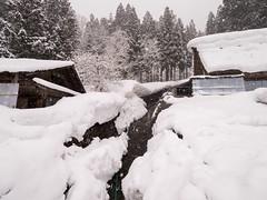 P1011350 (Rambalac) Tags: asia japan lumixgh5 forest snow water азия япония вода лес снег
