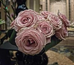 LA Biltmore Hotel Lobby Floral Arrangements (oscarpetefan) Tags: oscarpetefan losangeles california dtla biltmore hotel flowers canon g9x pointandshoot oneinchsensor on1pics on1photoraw architecture walkingtour