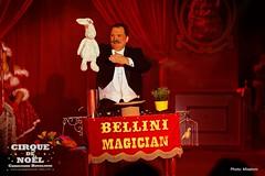 www.LeCirqueDeNoel-Paris.com_6622 (Mixatom) Tags: christianebouglione bouglione spectacle cirque circus zirkus circo cabaret kabaret paris acrobate acrobat akrobat rollerskating equilibrist straps aerialstraps silk aerialsilk clown juggling jonglerie jongleur juggler gymnastique gymnastic gymnaste gymnast burlesque musique music concert standingovation mâtchinois chinesepole paaldans poledance contorsionniste contortionist contorsion contortion handstand handtohand mainàmain nikon canon tamron sigma