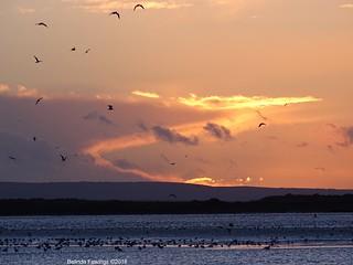 Sunset (Flickr Explore)