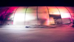Native Exotics greenhouse (Hejemoni (@fbauzonx on Instagram)) Tags: carnivorousplants pitcher plant gardening horticulture smallbusiness greenhouse night color colors light lighting led snow winter newyork