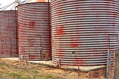 Three silo's. (Ian Ramsay Photographics) Tags: harringtongrove newsouthwales australia silo wheat grown stables farm buildings mill survive homestead grounds orielton historic