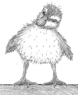 DucklingFrontpage