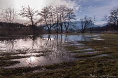 Miroir (Grozibou38) Tags: paysages landscape eau water miroir reflexions arbres trees contrejour savoie granier nikon nikond90