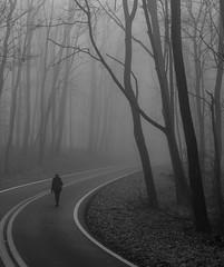 Turn of the road (The_3rd_eye_digital) Tags: westvirginia coopersrock morgantown planart1450