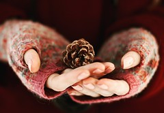 Keep it safe (the girl with the blue scarf) Tags: winter warmth hands embrace pinecone safe protect lights
