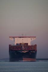 MSC MIRJAM (angelo vlassenrood) Tags: mscmirjam ship vessel nederland netherlands photo shoot shot photoshot picture westerschelde boot schip canon angelo walsoorden cargo container