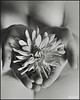 flower (pavelfadeevv) Tags: flower portrait face beauty beautiful girl cute eyes hair fashionable fashion charm nature studio photo art character mood lady people photography bw still color monochrome blackandwhite blackandwhitephotography