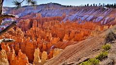 A65V2 363 (2) Bryce Canyon N.P. (Allen Woosley) Tags: bryce canyon np utah a65v2