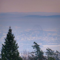 ~ foggy city view ~ Sprinkelet, Gressvik, Norway with view over Fredrikstad and Fredrikstad bridge (Tankartartid) Tags: stad city bridge bro snow tree trees snö träd gråväder view greyweather vinter winter utsikt sprinkelet fredrikstad gressvik europe norge norway instagram ifttt